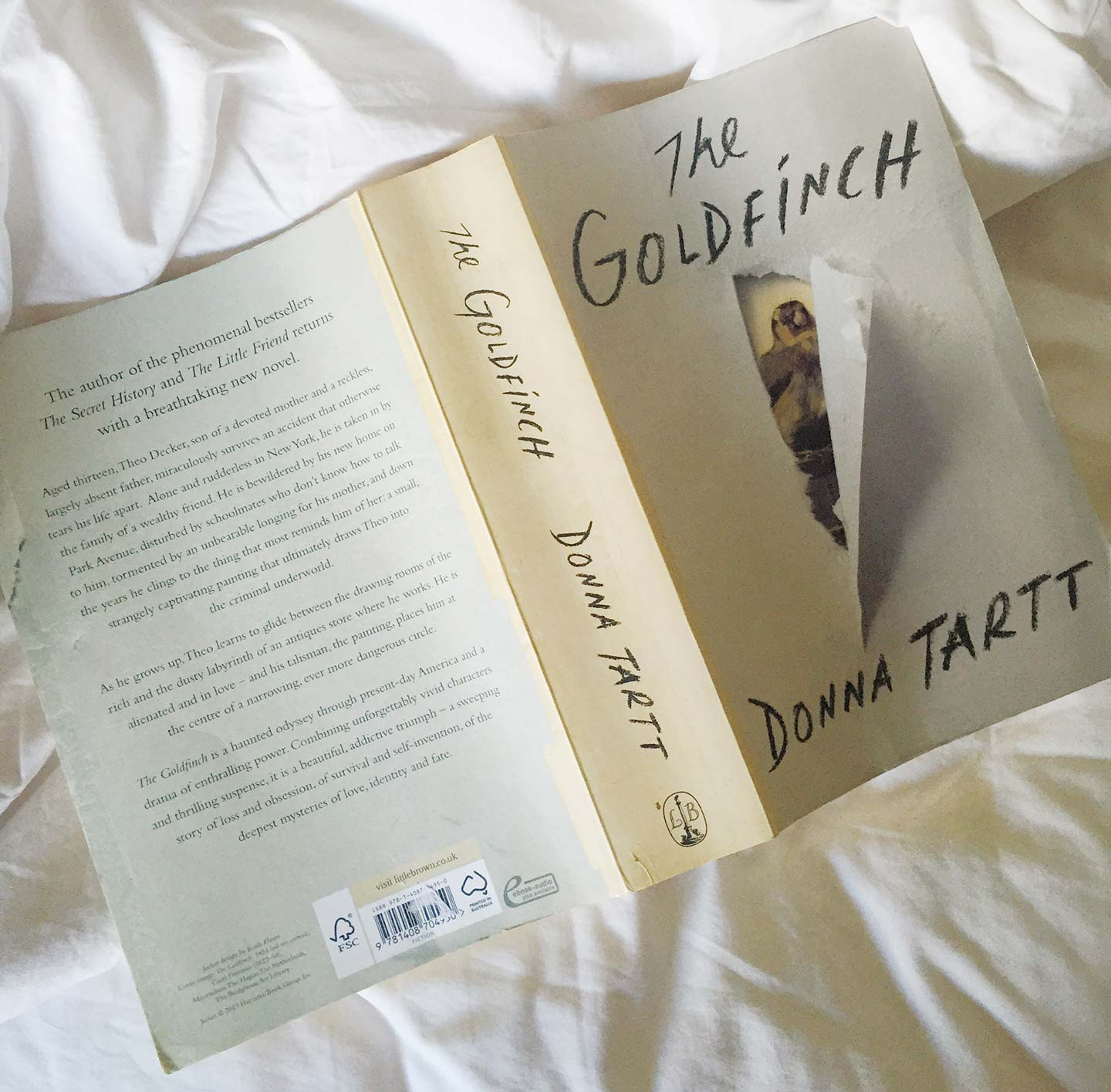 goldfinch book donna tartt reading on a bed