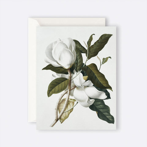 Father Rabbit Stationery | Card | GARDENIA