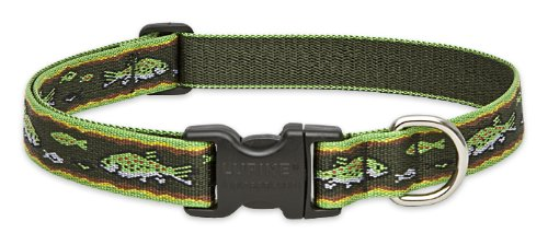 "LupinePet Originals 1"" Brook Trout 16-28"" Adjustable Collar for Large Dogs"