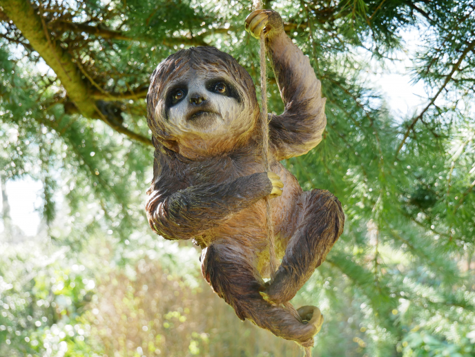 Garden climbing sloth on rope