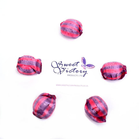 Monarch Sugar Free Raspberry and Blackcurrant Sweets 100g - Sweet Victory Products Ltd